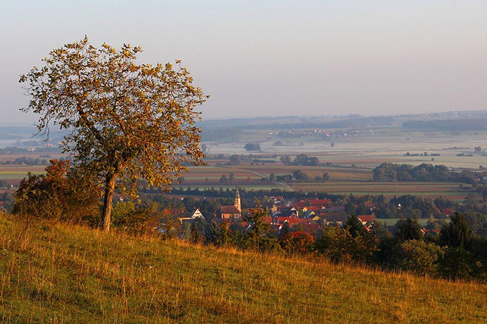 Landschaftsbild mit einem von Feldern und Bäumen umgebenem Dort mit Kirche.