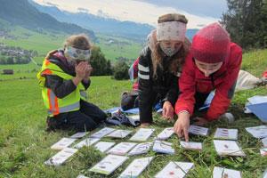 Drei Drittklässlerinnen sitzen auf einer grünen Talwiese in den Allgäuer Bergen. Vor Ihnen liegen etwas größere Spielkarten mit Insekten-Bildern. Das Mädchen ganz links beobachtet einen Käfer in einer Becherlupe. Mithilfe der Bestimmungskarten und der Beschreibung der Schülerin identifizieren die Drei im Team das Insekt.