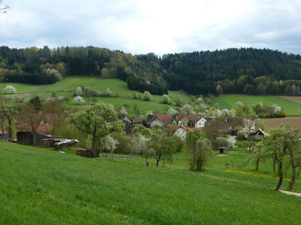 Panoramablick über alte Streuobstwiesen im Ort Kümmel im Landkreis Lichtenfels.