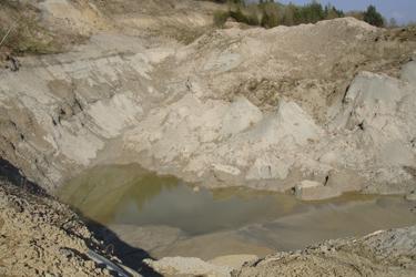 In einer Lehmgrube hat sich Wasser angesammelt und dient nun als Lebensraum für seltene Amphibien zur Verfügung.