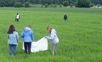 Auf einem Feld mit noch jungem, grünem Getreide, suchen drei Mädchen mit einem weißen Tuch in der Hand nach Wildkräutern; im Hintergrund streifen zwei Jungen durch das Feld.