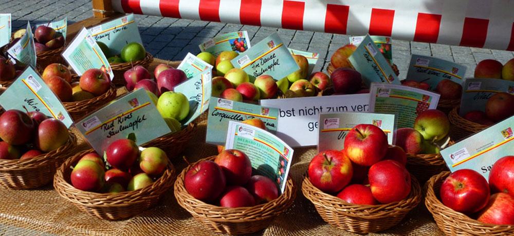 In kleinen Körben sind verschiedene alte Apfelsorten auf einem Marktstand zu sehen.