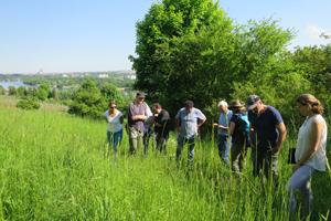 Eine Gruppe von Fachleuten steht in einer Wiese und betrachtet die verschiedenen Gräser.