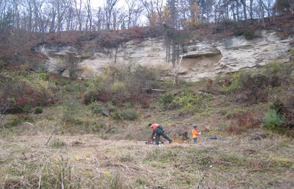 Zwei Männer in bunten Anoraks mähen mit speziellen Maschinen das hohe Gras an einem Hang unterhalb einer steilen Felswand.