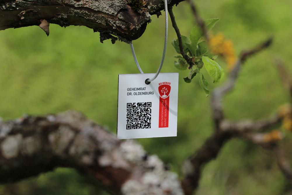 An einem knorrigen Ast eines alten Obstbaumes hängt ein Schild mit QR-Code.