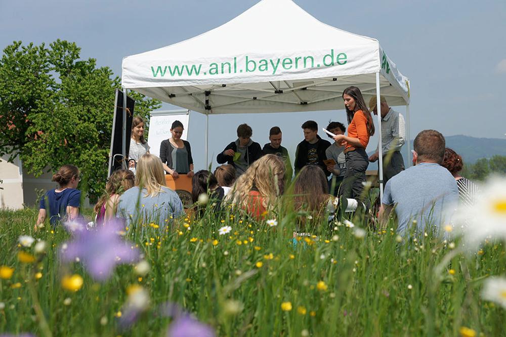 Eine Gruppe von Jugendlichen steht im Schatten unter einem weißen Zeltdach, das auf einer Wiese voller bunter Blumen steht.