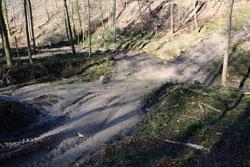 Stark zerfahrene Fahrspuren führen in einen Waldbach und verzweigen sich als Fahrtrassen in den Bachlauf, bachparallel und den Hang hinauf.