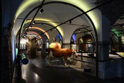 Ausstellung rund um einen ehemaligen Kuhstall-Futtertisch mit Kuhpräparat, Baummodell und verschiedenfarbigen Lichtinstallationen.