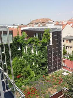 Begrüntes Hotel in der Wiener Innenstadt, im Vordergrund ein niedrigeres, bepflanztes Flachdach.
