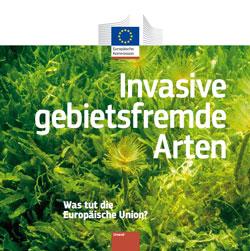 Titelbild der Broschüre mit invasiven Pflanzen.