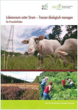 """Titelbild der Broschüre """"Lebensraum unter Strom"""" mit 3 Bildern: Unter einer Freileitung grasende Schafe, eine Heidefläche und ein Arbeitseinsatz."""