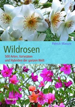 Titelbild des Buches Wildrosen