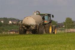 Ein Landwirt bringt auf herkömmliche Weise (Anhänger mit Spritzplatte) Gülle auf dem Grünland aus.