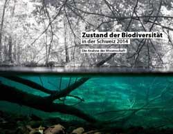 Bild eines Gewässers im Wald, bei dem auch zu sehen ist, was sich unter der Wasseroberfläche befindet. Unter Wasser ist das Bild farbig gehalten, über Wasser schwarz-weiß.