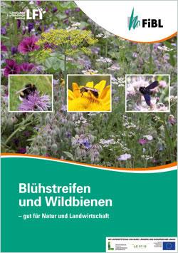 Titelbild der Broschüre Blühstreifen und Wildbienen mit einem Wiesenbild und Kleinfotos von Bienen.