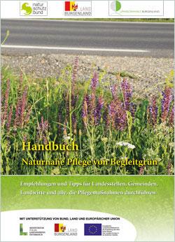 Titelbild der Broschüre mit einem blühenden Seitenstreifen einer Straße.