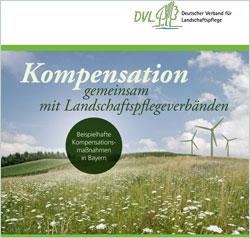 """Titelseite der Broschüre """"Kompensation"""" mit einer blütenreichen Wiese mit Windrädern im Hintergrund."""