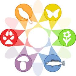 Loge der Offenen Naturführer (ON) mit schematischer Darstellung verschiedener Tiergruppen als Kaleidoskop.