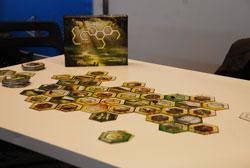 Vier Personen spielen Ecogon. Auf einem Tisch liegen sechseckige Spielkarten mit verschiedenen Tier- und Pflanzenarten des Ecogon-Spiels.
