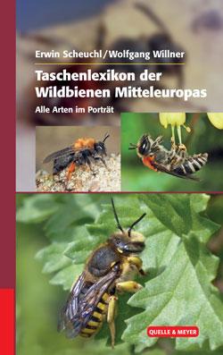 Titelbild des Buches mit drei verschieden großen Bildern von Wildbienen, die auf Blüten und Blättern sitzen.