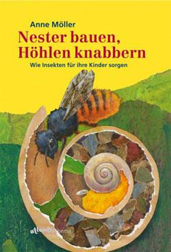 Gemaltes Titelbild des Buches, auf dem eine Biene zu sehen ist, die ihr Nest in einem Schneckenhaus im Boden angelegt und einiges darin verstaut hat.
