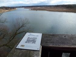 Blick von einer Brücke auf eine große Wasserfläche mit von Schilf bestandenen Halbinseln. Auf der Brüstung ist ein Schild von Ornitho.de befestigt, auf dem ein QR-Code zu erkennen ist.