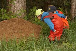 Zwei Kinder beobachten einen großen Ameisenhaufen.