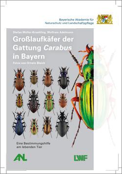 : Abgebildet sind ein großer glänzendgrüner und viele kleine Käfer, die geordnet in Reih und Glied stehen. Wichtig: Die Broschüre bedient sich optischer Bestimmungsmerkmale und ist daher leider nicht im barrierefreien Format für Blinde lieferbar. Wir bitten dies zu entschuldigen.