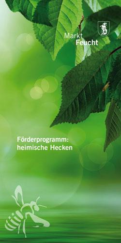 In Grün gehaltener Flyer, auf dem im Vordergrund Blätter einer Hainbuche und eine gezeichnete Biene zu sehen sind.