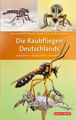 : Das Titelbild ist aufgegliedert in 3 Fotos von Raubfliegen in Großaufnahme.