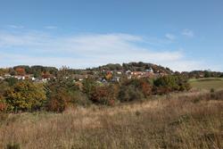 Landschaftsbild mit Hecken und Siedlung sowie Waldsaum im Hintergrund.