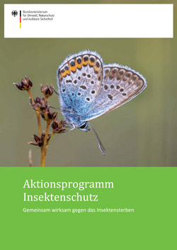 Titelbild des Aktionsprogramms Insektenschutz.