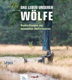 Eine Wolfsmutter geht mit ihren drei Jungen durchs hohe Gras.
