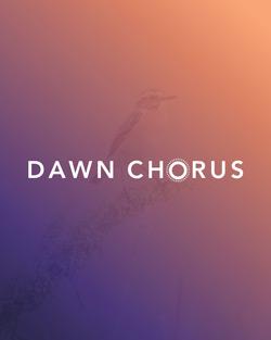 "Themenbild zum Projekt ""Dawn Chorus 2020""."