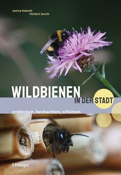 Das Titelbild besteht aus zwei Bildern. Beim oberen Bild sitzt eine Wildbiene auf einer lila Blüte, beim unteren kriecht eine Wildbiene gerade aus einem Bambusrohr, das als Legehilfe dient.