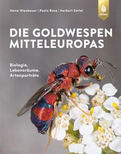 Das Titelbild zeigt die Großaufnahme einer Goldwespe, die auf einer Blüte sitzt.