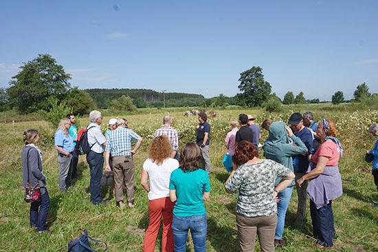 Die Exkursionsteilnehmer beobachten eine Rinderherde.